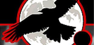Dream Raven Designs logo