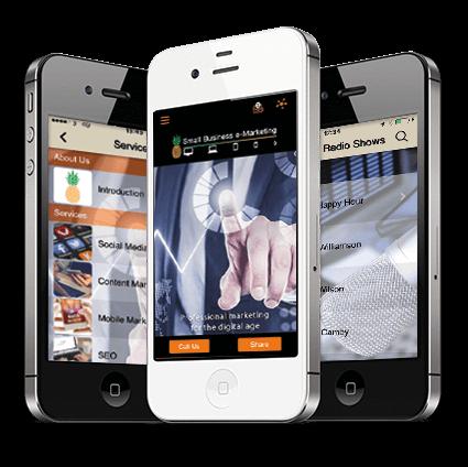 Smallbiz-emarketing mobile app
